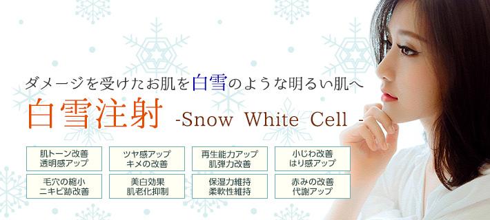 ダメージを受けたお肌を白雪のような明るい肌へ。白雪注射